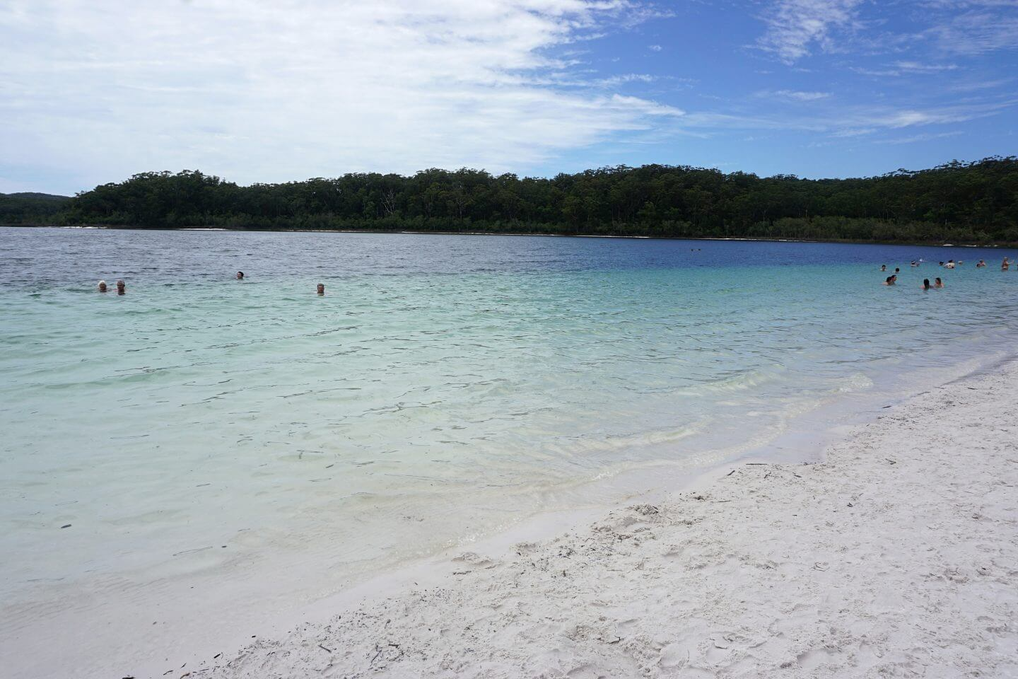 fraser island discovery group